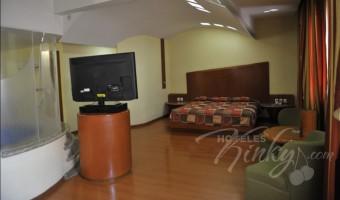 Love Hotel Aranjuez Suites & Villas, Habitacion Motel Suite Jacuzzi