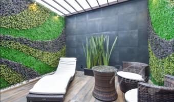 Love Hotel Catalina, Habitacion Suite Garden