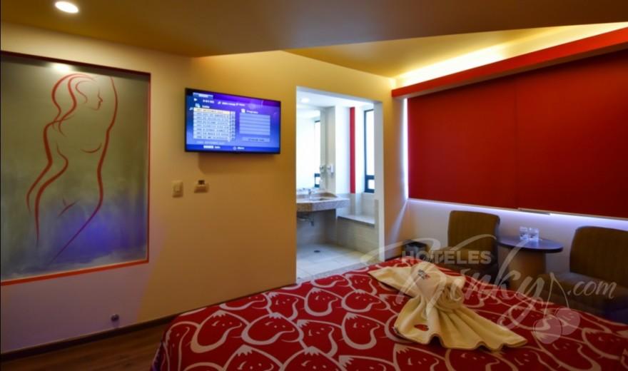 Habitaciòn Standard del Love Hotel Hot Insurgentes