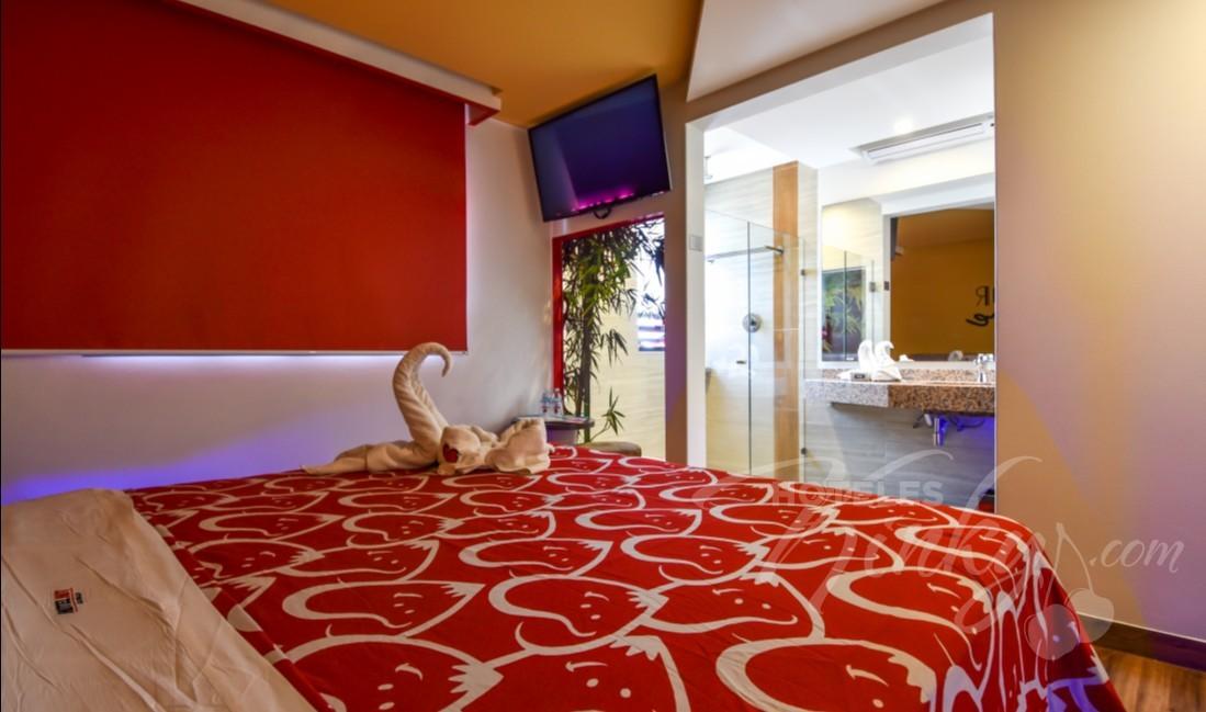 Habitaciòn Mini  del Love Hotel Hot La Villa