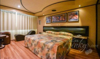 Love Hotel Oslo, Habitación Suite Especial