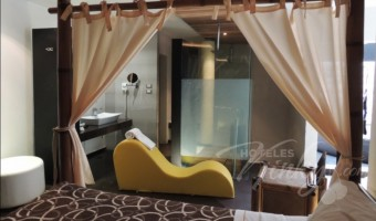 Love Hotel O`Gavilán, Habitación Villa Jacuzzi - Sauna