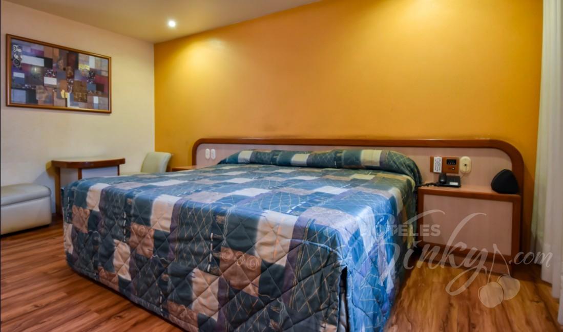 Love Hotel Paraíso del Sur, Habitacion Suite Sencilla