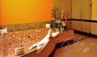 Love Hotel Plaza del Rey Hotel & Villas, Habitación Villa Jacuzzi Standard