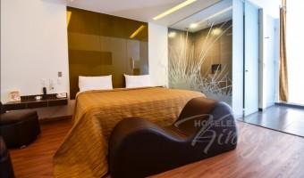 Love Hotel Sara, Habitación Sencilla