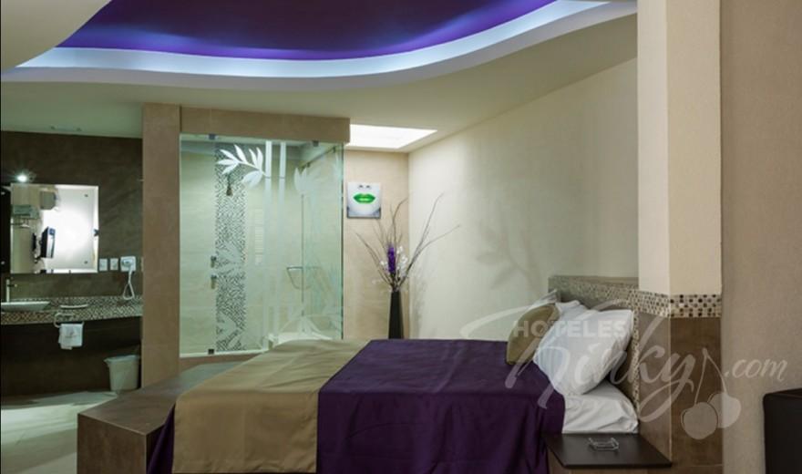 Love Hotel The Paradise, Habitacion Sencilla con Cochera