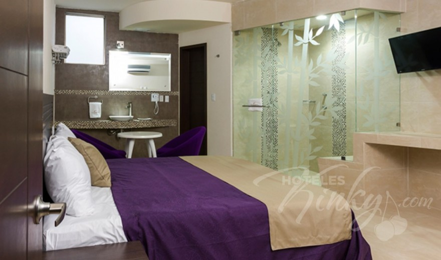 Love Hotel The Paradise, Habitacion Sencilla sin Cochera