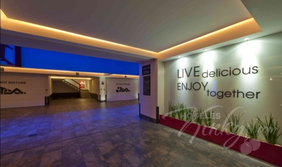 Imagen del Love Hotel V Motel Boutique Viaducto