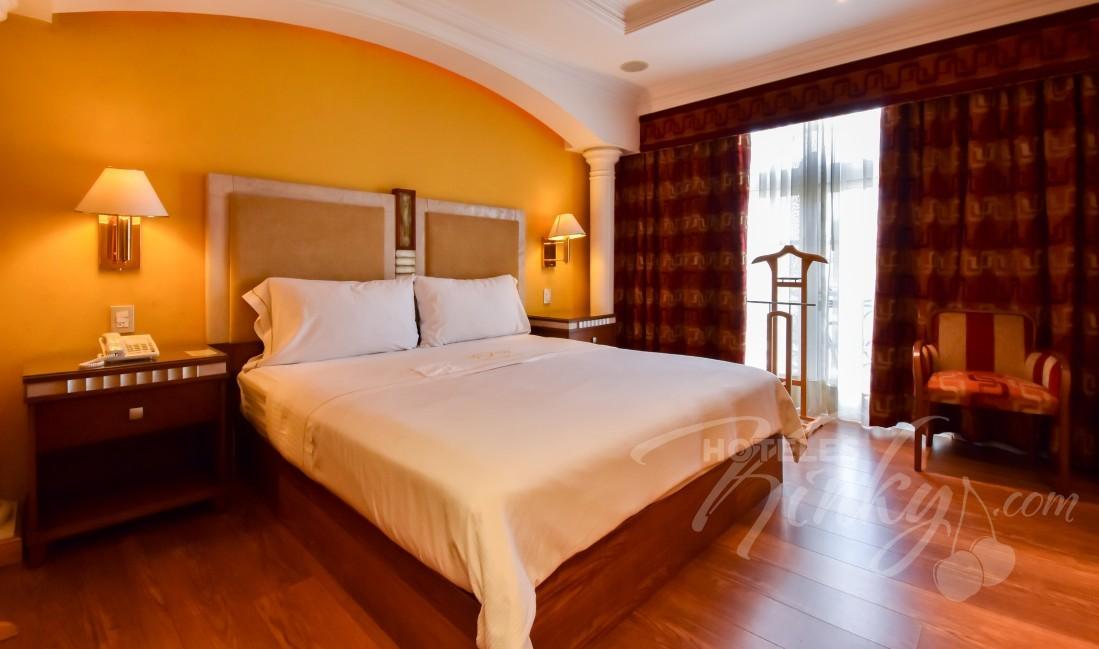 Habitaciòn Standard Torre  del Love Hotel Villas Princess