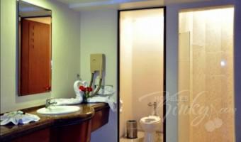 Love Hotel Villas Puente, Habitacion Hotel Sencilla
